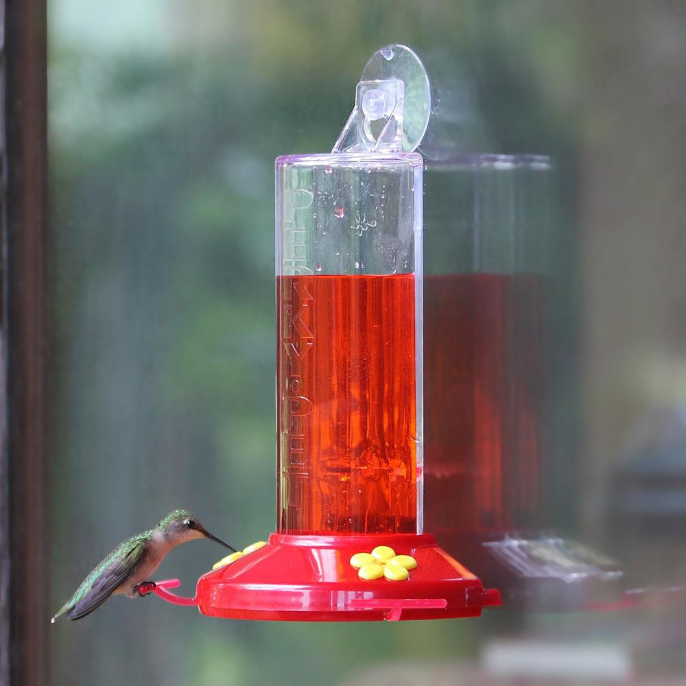 red for we best feeders sale hummingbird and glass love beautiful products finish with white feeder nectar copper drip