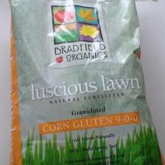 Organic Corn Gluten Granules