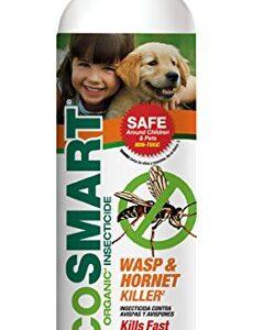 Eco smart organic wasp hornet killer in aerosol container