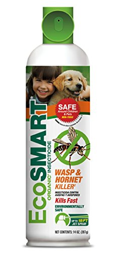 Eco smart organic wasp hornet killer in aerosol container