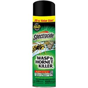 spectracide wasp and hornet killer in aerosol can