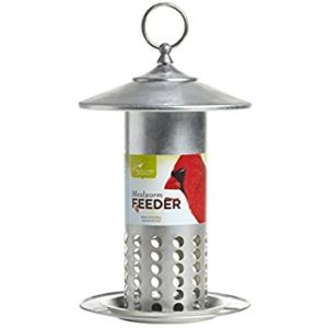 Photo of Mealworm Feeder in metal with holes along bottom half, and label across center with red cardinal on right side.