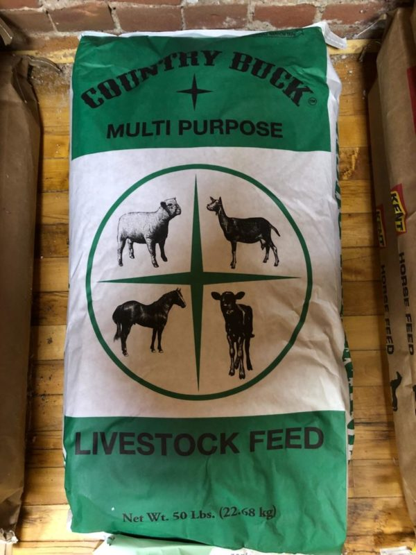 Country buck multi purpose livestock feed - 50 lbs. Bag is green with white band across center and graphic of sheep, goat, horse, and cow.