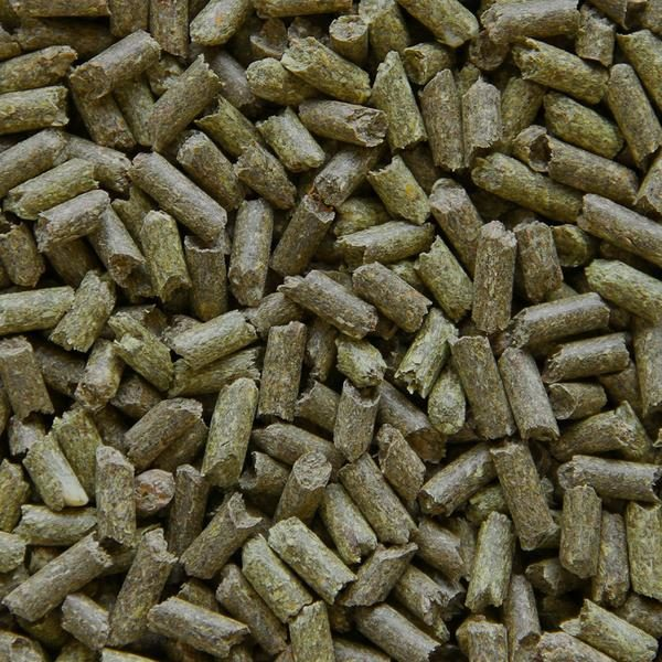 Photo of Guinea Pig Pellets, which are tubes of greenish brown food.