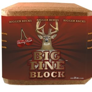 big tine deer block, 25 lbs