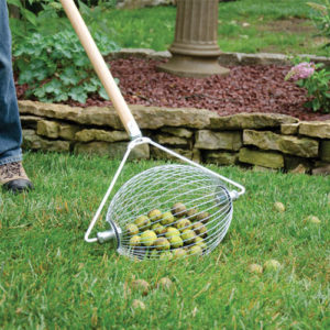 Nut Wizard - small, is basket that spins attached to wooden handle. Picks up those green nuts in the yard that fall from the trees.