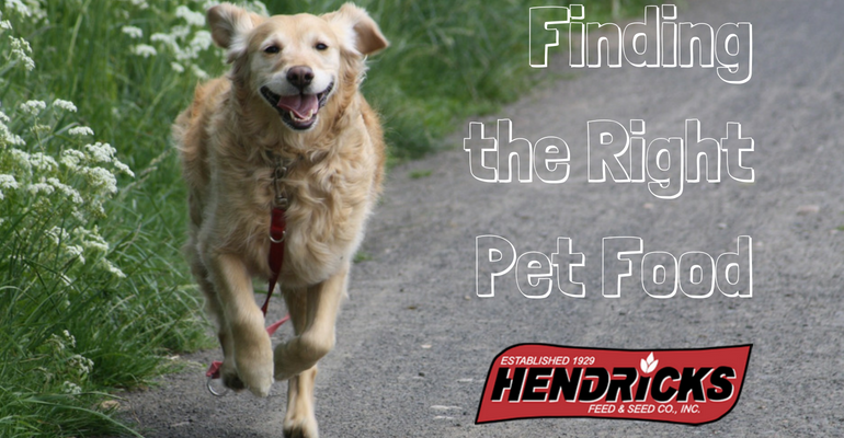 Let us help you find the right pet food for your Iowa pet